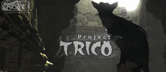 project-trico-cover-image-005