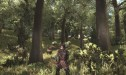 500x_argaan_deer_hunting_in_the_woods