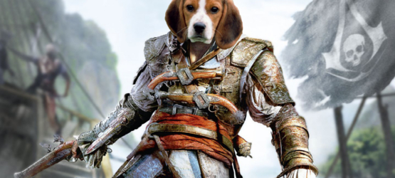 assassindogs