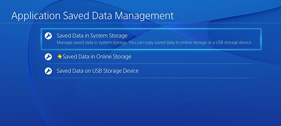Saved Data in System Storage