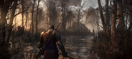 The Witcher 3 The Wild Hunt 5