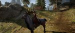 Dragon Age™: Inquisition_20141104095324