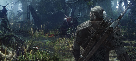 thewitcher3pic3