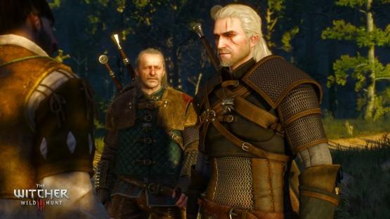 the witcher 3 chat
