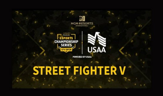 us army street fighter